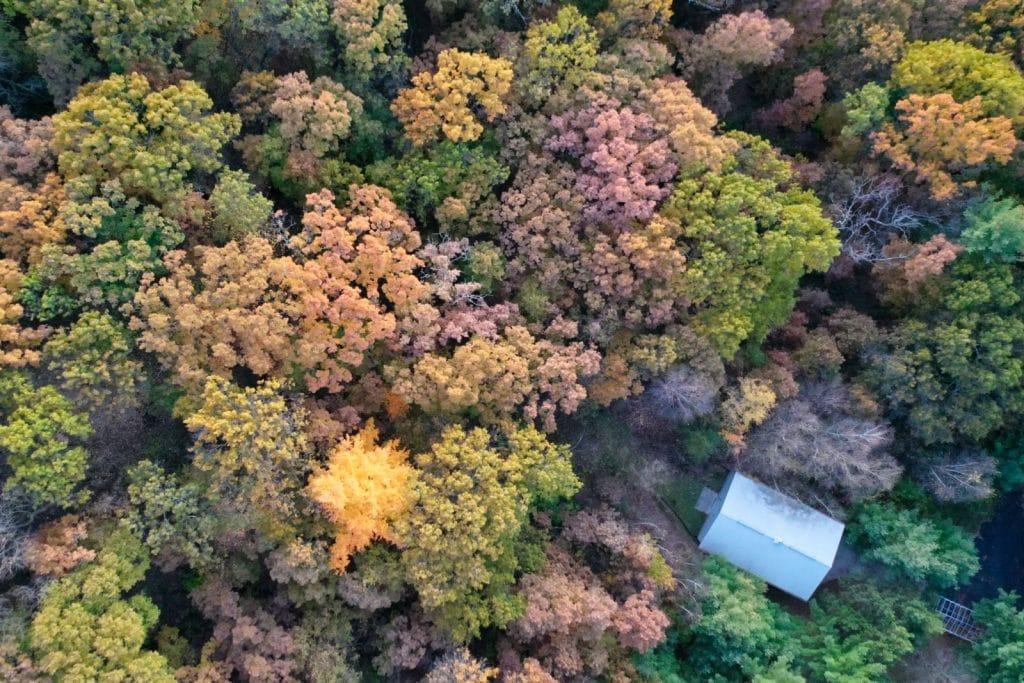 Couleurs d'automne dans le comté de Columbia