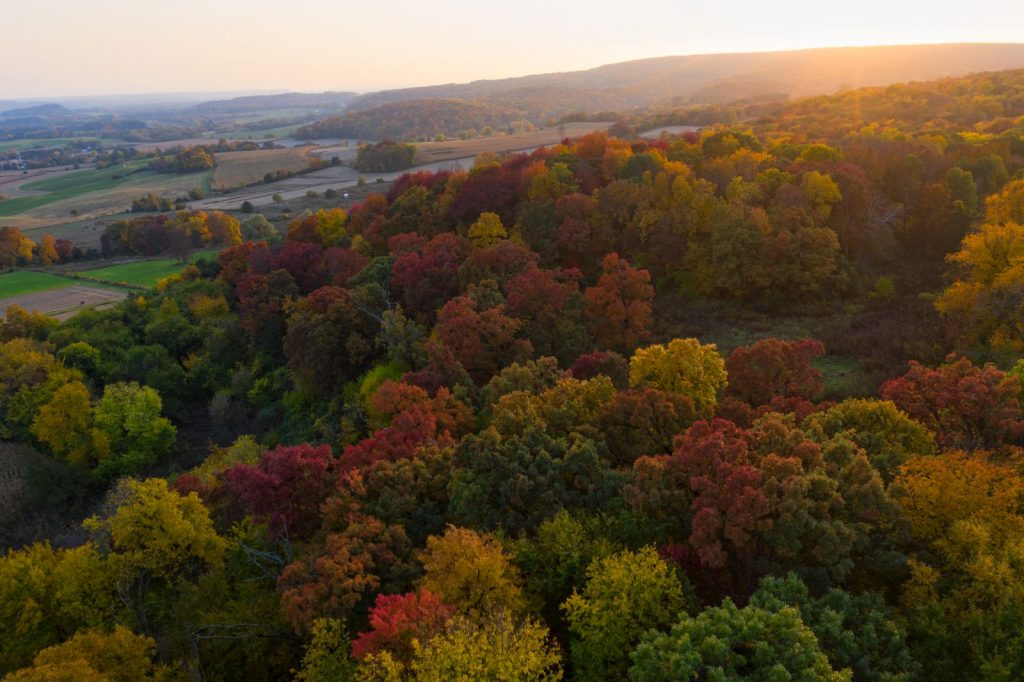 Fall Colors in Baraboo, WI