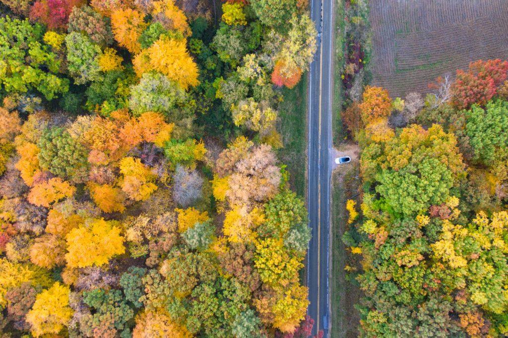 Fall Colors in Merrimac, WI